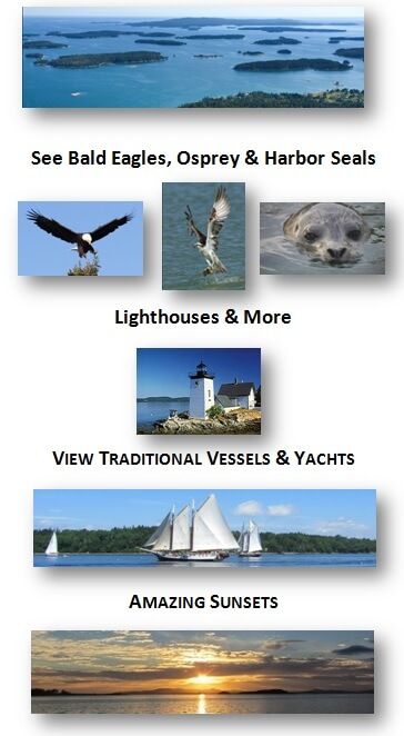 Lighthouse wildlife schooners sunsets
