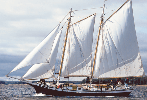 Schooner Mistress Post Card